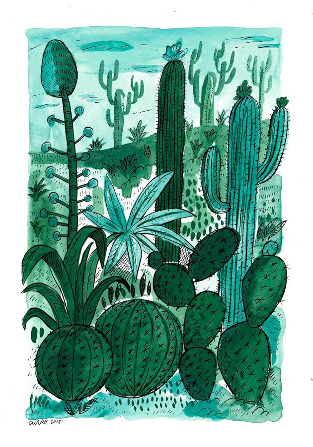 curro-suarez-cactus
