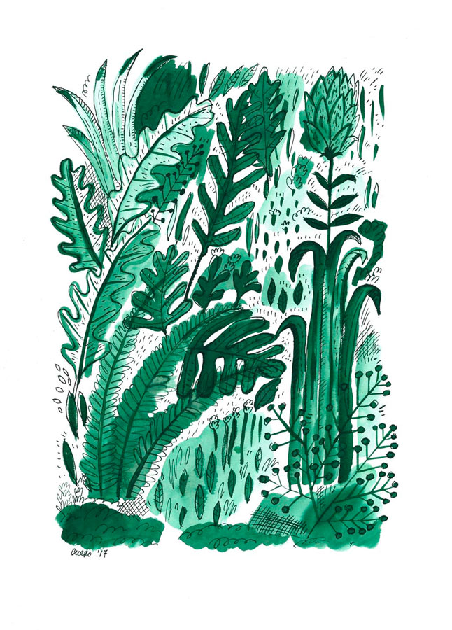 curro-suarez-vegetacion