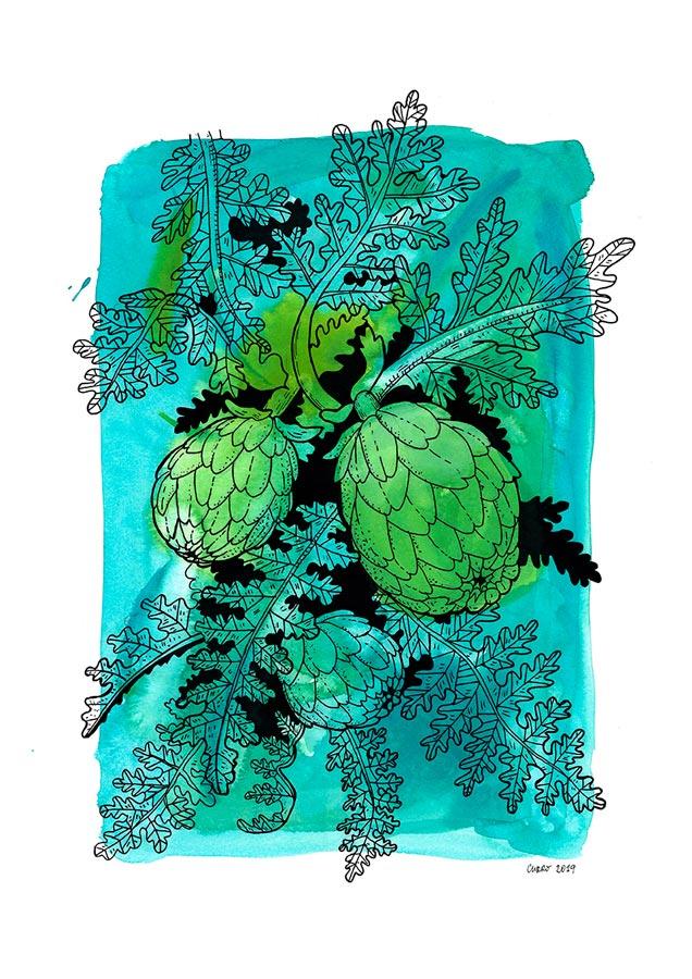 curro-suarez-alcachofas-B