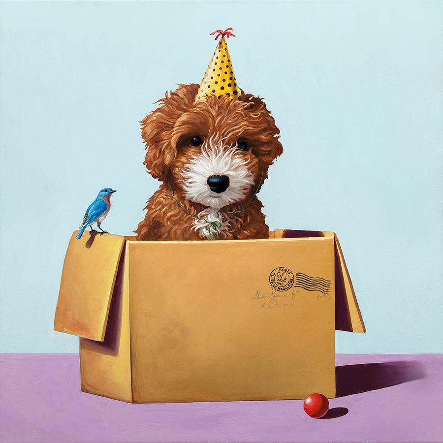 geoffrey-gersten-dog-box