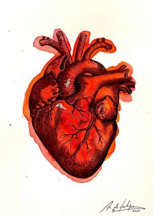 antonio-de-felipe-corazon-4