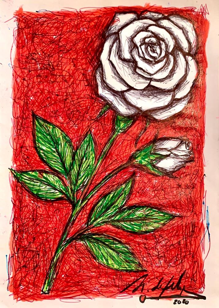 antonio-de-felipe-rosa-blanca-fondo-Rojo